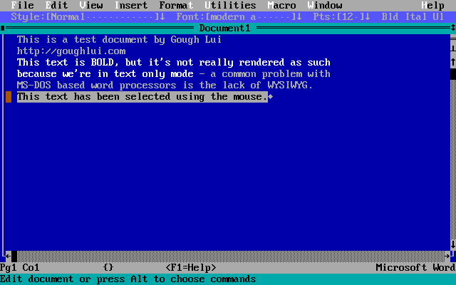 Word 5.5 (DOS)